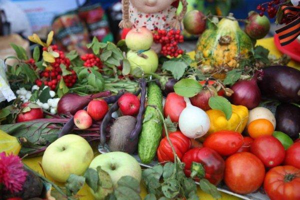 В ЕАО фермеры будут поставлть продукты в столовую комбината ГОК СК