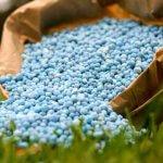 Завод минеральных удобрений появится на территории Татарстана