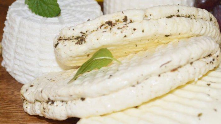 Спор производителей адыгейского сыра