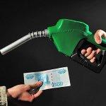 Псковские аграрии получат 20 миллионов рублей в качестве компенсации дорогого топлива