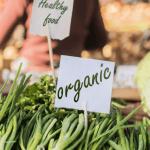 В России принят закон об органических продуктах