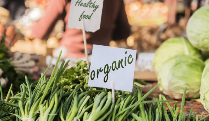 Госдумой принят закон регламентирующий производство органических продуктов