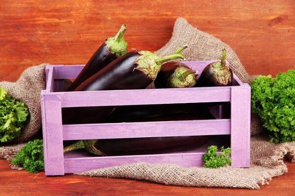 В Крыму получили новый сорт коричнево-фиолетового баклажана