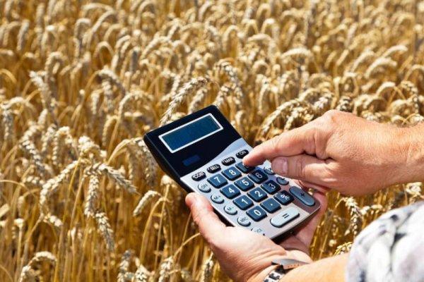 Гоударственная помощь фермерам может увеличиться на 20%