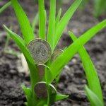 Увеличение налога на имущество приведет к краху псковских сельхозпроизводителей