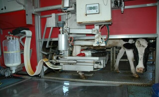 Голландцы строят в Калуге завод доильных роботов