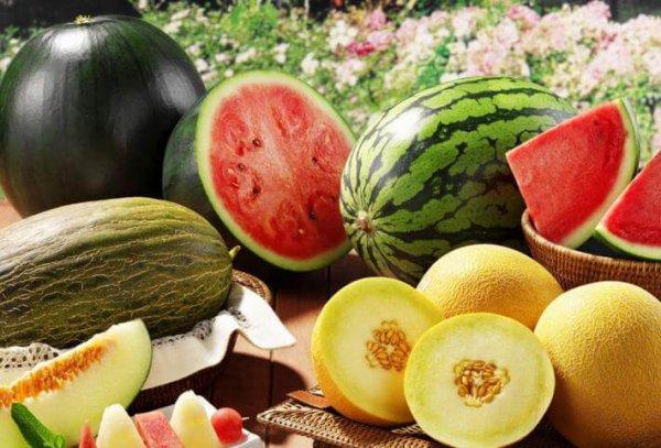 На Ставрполье прошел семинар бахчеводов и конкурс на лучшую ягоду