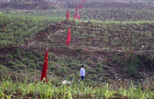 Китайским инвесторам предоставят миллион гектаров дальневосточной земли