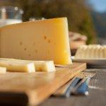 Компания Tetra Pak намерена принять участие в развитии сырного производства Башкирии