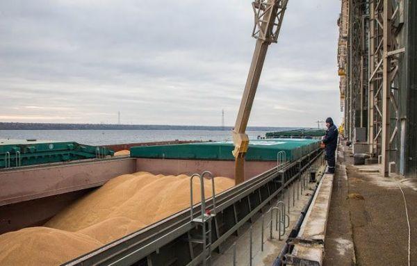 Сирия сможет больше закупать российского зерна
