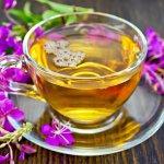 Тюменский иван-чай нашел своих потребителей в Германии