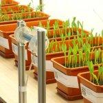 В сельскохозяйственном вузе Башкортостана появилась современная биотехнологическая лаборатория