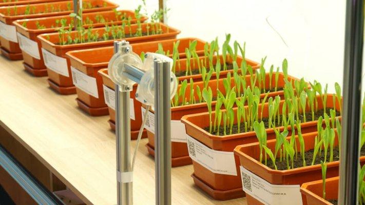 В башкирском аграрном вузе появилась инновационная биотехнологическая лаборатория
