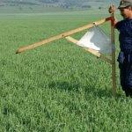 В Государственной думе обсудили предложенные поправки в закон о землепользовании