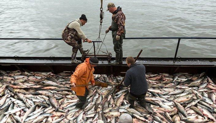 13 международный конгресс рыбаков проведут 4- 5 октября в столице Приморья