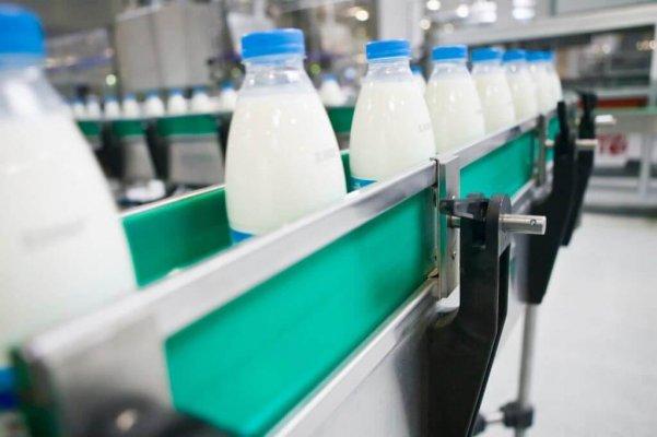 В Оренбуржье в феврале 2019 года запустят в работу молочный комплекс