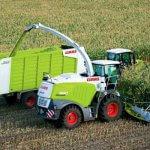 Сельхозпроизводители республики Коми получили хороший урожай кукурузы