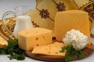 Новгородским сыроварам не хватает качественного сырья