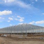 В Рязанской области создается совместное российско-итальянское производство тепличных овощей