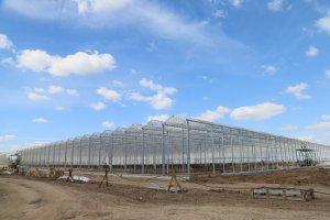Очередной тепличный комплекс в Рязанской области создается при участии итальянской компании