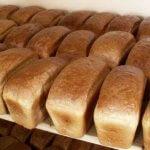 Стоимость хлеба в Северо-Западном регионе может вырасти на 20%