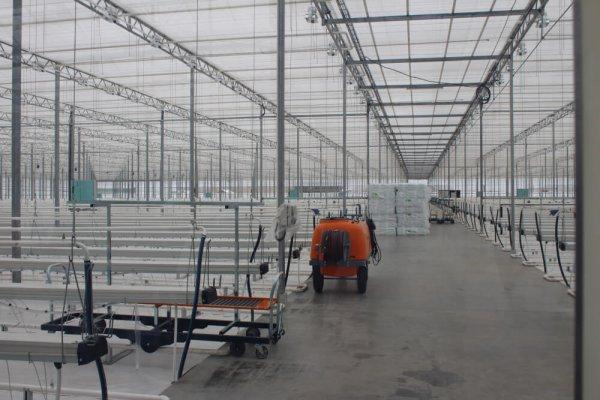 На Орловщине начал работу тепличный комплекс в Альшанских Выселках