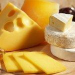 Белгородская  область может стать российской столицей твердых сыров