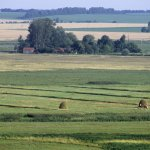 Кубанское правительство выступило с инициативой о разграничении сельхозугодий