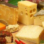 В Липецкой области создается производство твердых сыров