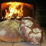 Владелец дальневосточного гектара в Приморском крае печет экологический хлеб
