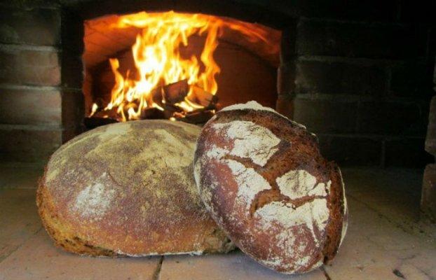 Экологически чистоый хлеб на дальневосточном гектаре