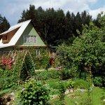 Садоводческие и огороднические товарищества не будут платить налог на прибыль