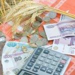 Деньги, выделяемые государством для поддержки фермеров в регионах, теперь не могут направляться другим сельхозпроизводителям