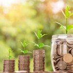 Инвесторов привлекает сельское хозяйство Ставропольского края