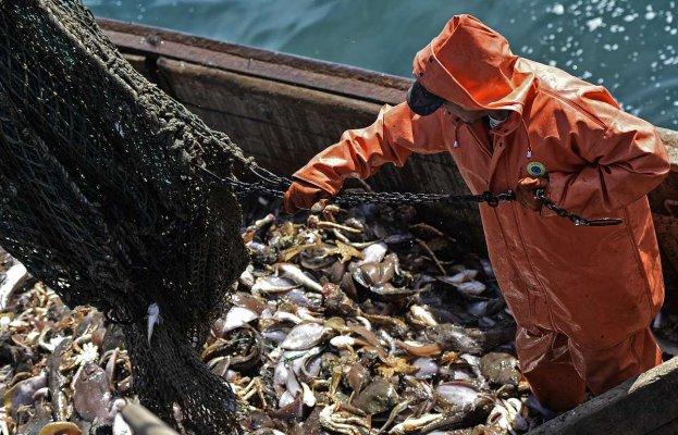 """Рыбаки Севера, не успевшие установить систему """"Гонец"""" , могут понести крупные убытки"""