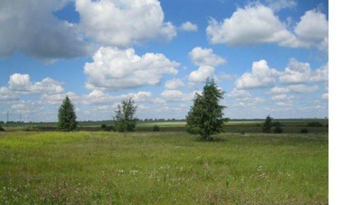 В Новгородской области будут искать не обрабатываемые земли