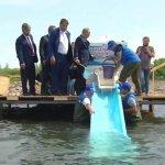 В Бурятии будет реконструирован Селенгинский рыбозавод по искусственному разведению омуля