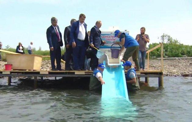 На Селенгинском рыборазводном заводе проведут реконструкцию