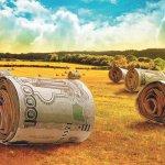 Российские фермеры готовят предложения по изменению системы распределения господдержки