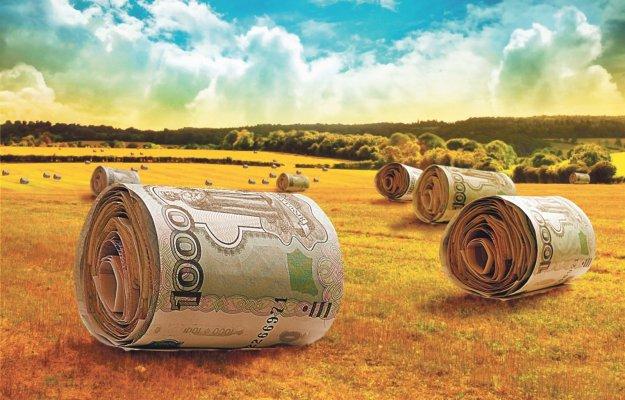 По мнеию российских фермеров государство должно больше внимания уделять малому бизнесу