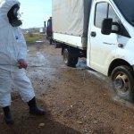 В Приморском крае карантин по ящуру снят во всех районах