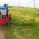 В Забайкальском крае начали производство однобрусных сенокосилок
