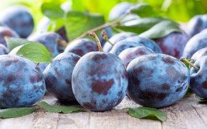 Ростовские аграрии оказываются от импортных продуктов