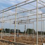 В Вологодской области в этом году начнет действовать новый тепличный комплекс