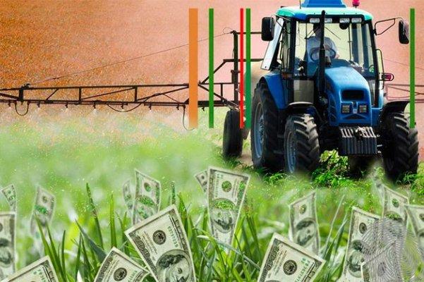 Половина российских фермеров не могут вернуть кредиты банков
