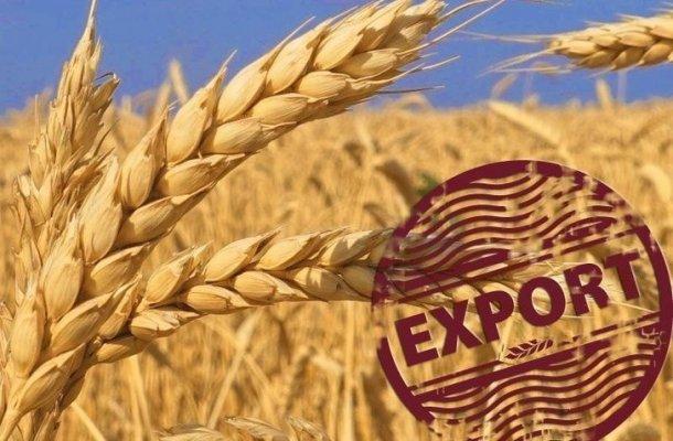 В калиниградской области все зерно вывозят за границу, оставляя местных производителей мяса без кормов