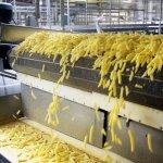 В Рязанской области начали выпускать картофель «фри»
