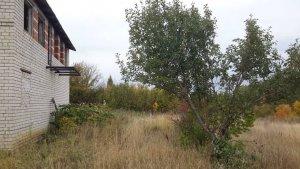 Алтайское правительство рассматривает вопрос продажи сельхозземель