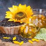 Агрохолдинг «Эфко»  увеличивает объемы переработки масличных культур