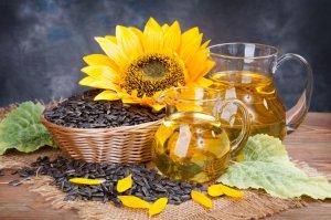 """Компания """"Эфко"""" увеличивает объемы переработки масличных культур"""